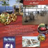 Ad Graphic Design Hawaii & Printing Hawaii – Blue Waiaka