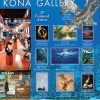 Ad Graphic Design Hawaii – Wyland Gallery